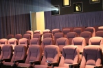 Auditorium Seating at the Variety Screening Room